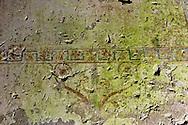 """Roma 1 Aprile 2015<br /> Presentato il progetto per il risanamento della Domus Aurea, realizzato dalla Soprintendenza speciale per i beni archeologici di Roma, che consiste nella sistemazione del  giardino pensile,una parcella di 800 mq ,realizzato con tecnologie sostenibili che farà da «scudo» alla  Domus Aurea impedendo le infiltrazioni d'acqua. L'interno della Domus Aurea. Il Grande Criptoportico. Affresco dipinto su un muro<br /> Rome, April 1, 2015<br /> Presented the project for the rehabilitation of the Domus Aurea, fulfilled  by the Superintendence for Cultural Heritage of Rome, which is the arrangement of the roof garden, a plot of 800 square meters, made with sustainable technologies that will be the """"shield"""" at the Domus Aurea for  preventing water infiltration. The interior of the Domus Aurea. The Great cryptoporticus.Fresco Painting on a  wall"""