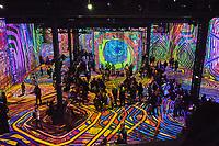 France, Paris (75), Atelier des Lumières, jeu de lumière sur Hundertwasser et Klimt, une réalisation Gianfranco Iannuzzi, Renato Gatto, Massimiliano Siccardi