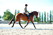 04 - 28th Sept - Dressage