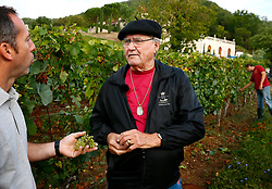 File photo - EXCLUSIVE. Prince Consort Henrik of Denmark pictured in his wine property of Caix Castle, in Caix, Cahors region, southwestern France on September 24, 2012. For the 2012 grape harvest, the Prince, who participates every year in the annual event - from the harvest up to the cask filling - was joined by his wife Queen Margrethe II. This year, the Prince was happy to make his wife taste a new limited red wine cuvee, a very special batch called 'La Royale', his favorite one. Prince Henrik prefers red wine because the grapes are hand-picked. The 25-hectare family estate produces about 160,000 bottles of 'Cahors' red and white wine, but the vineyard also started to produce rose wine. Red wine represents 70% of the castle's production. Best-selling around the world are the 2002 to 2005 vintages called 'La Cuvee du Prince du Danemark, Chateau de Caix, Cahors'. 10% of the Prince's wine is sold in France, 30% are exported in Denmark and 60 % in the rest of the world, mostly in China. Wine is a family tradition as Henrik's brother and sister also own some land next to his, and Queen Margrethe backs her husband's passion. Prince Henrik intends to open 15 wine stores called 'La Cave du Roi des Vins de France' in China. For the first time, Prince Henrik enjoys a three-star rating in the Hachette Wine Guide for the 2009 vintage. Prince Henrik, the French-born husband of Denmark's Queen Margrethe II, has died, the palace announced Wednesday. He was 83. Photo by Patrick Bernard/ABACAPRESS.COM