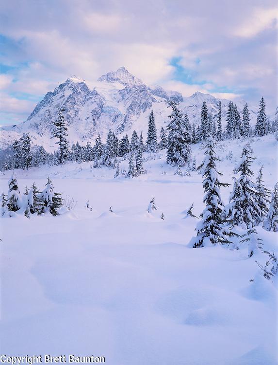 Mt. Shuksan, WA, USA.9,127ft. .Mt. Shuksan in North Cascades National Park..Winter at Picture Lake..Brett Baunton