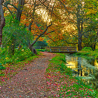 Pathway with wooden bridge near the Grist Mill pond and The Wayside Inn Grist Mill in Sudbury Massachusetts during a New England fall foliage peak colors.<br />