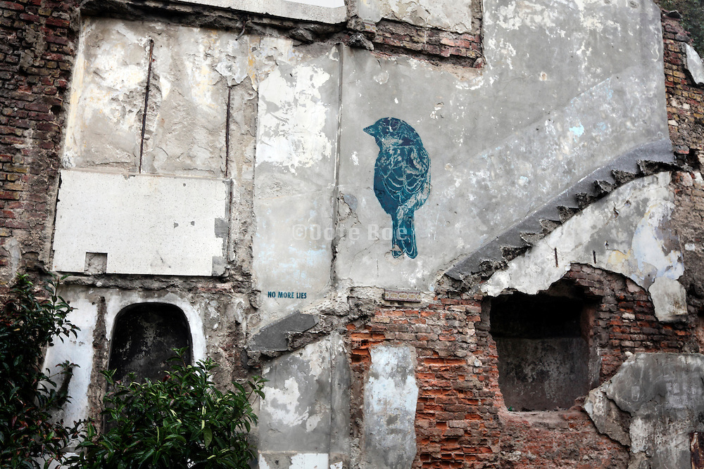"bird and text saying ""no more lies"" on old broken down house wall"