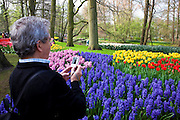 Tourist taking photographs at the Keukenhof tulip and flower show in Lisse, Holland - Netherlands Editorial Use only.