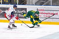2019-11-20 | Umeå, Sweden: Västervik (7) Niklas Folin does a tripping to Björklöven (29) Alexander Wiklund in HockeyAllsvenskan during the game  between Björklöven and Västervik at A3 Arena ( Photo by: Michael Lundström | Swe Press Photo )<br /> <br /> Keywords: Umeå, Hockey, HockeyAllsvenskan, A3 Arena, Björklöven, Västervik, mlbv191120