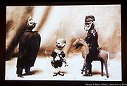 Photo de marionnettes « droits réservés » - 13e Festival de Casteliers 2018, Marionnettes pour adultes et enfants. -  au Pavillon au Théâtre d'Outremont, l'École Secondaire Paul-Gérin-Lajoie, Le théâtre des écuries, OBORO et le Pavillon Saint-Viateur / Montréal / Canada / 2018-03-09, © Photo Marc Gibert / adecom.ca