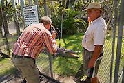 JOHNSTONE RIVER, AUSTRALIA - NOVEMBER 06, 2007: Crocodile farmer Mick Tabone opens pen for an unidentified tourist to make a photo of a freshwater crocodile in Jonston River, Australia.