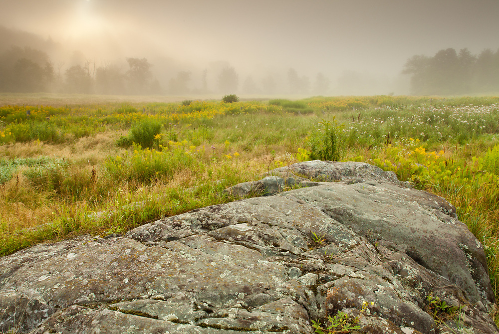 Early morning sunlight filters through the fog at the Northbranch Nature Center in Montpelier, VT.