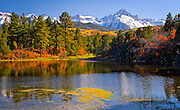 Beaver Pond and Mt. Sneffels.