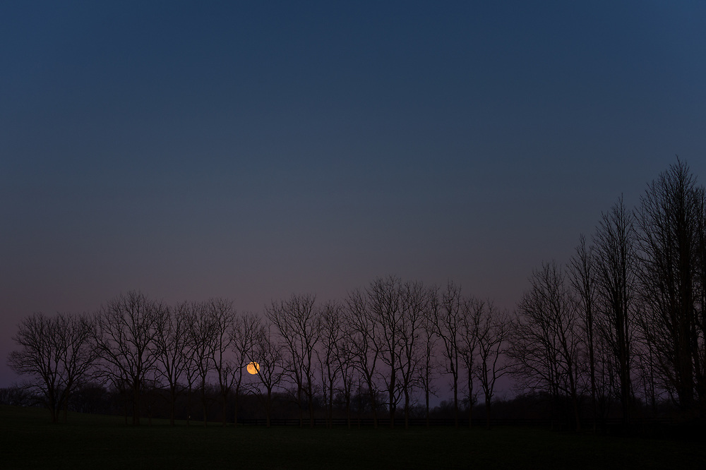 Moonset at Clarks's Farm in Howard County Maryland.