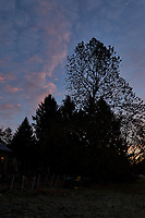 Autumn Backyard Sunrise Panorama. One of nine images taken with a Leica CL camera and 18 mm f/2.8 lens (ISO 200, 18 mm, f/11, 1/60 sec). Raw images processed with Capture One Pro and the composite created using AutoPano Giga Pro.