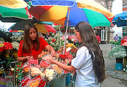 ECUADOR, HIGHLANDS, CUENCA teenage student in flower market