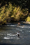 Fly fishing on the Frying Pan River in Basalt, Colorado.