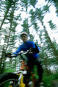 Image of a mountain biker on a forest trail, model released