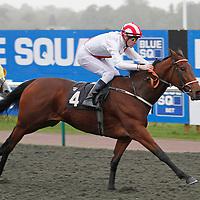 Simayill and J-P Guillambert winning the 2.35 race
