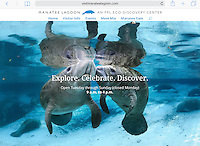 Manatee Lagoon Website and Advertising Banner Image by Carol Grant. 2016
