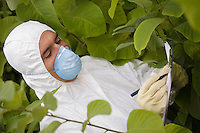 Worker in protective mask and suit writing on pad amongst plants