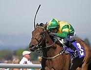 Beverley Races 260618