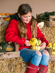 Kilduff Farm, East Lothian, Scotland, United Kingdom, 17 October 2019. Pumpkin Patch: The pick your own pumpkin patch gears up for its opening tomorrow. In its second year, Lucy and Russell Calder and their children make final preparations for visitors. The patch is open this weekend and next, selling a variety of Halloween carving pumpkins and culinary pumpkins.  Pictured: Maisie Calder (10 years) with some culinary pumpkins.<br /> Sally Anderson | EdinburghElitemedia.co.uk