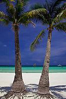 Palm trees on beautiful White Sand beach, Boracay, Philippines.