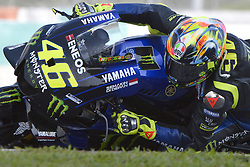 February 7, 2019 - Sepang, Malaysia - Yamaha Factory Racings rider Valentino Rossi of Italy takes a corner during the second day of the 2019 MotoGP pre-season testing at Sepang International Circuit February 7, 2019. (Credit Image: © Zahim Mohd/NurPhoto via ZUMA Press)