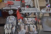El Mercado de Mariscos está localizado en la Avenida Balboa en la entrada al barrio San Felipe. Fue creado por la Alcaldía de Panamá con la ayuda de la Agencia de Cooperación Técnica de Japón con propósito albergar en un solo lugar a los vendedores de productos del mar y así cumplir con las normas sanitarias exigidas internacionalmente. También es ventajoso para los compradores, porque el precio esta siempre mejor que en el supermercado, Panama City. ©Victoria Murillo/Istmophoto.com
