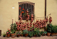 August 1997, Tuscany, Italy --- Red Onions Hanging Below Window --- Image by © Owen Franken/CORBIS