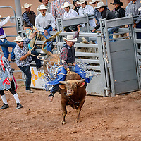 061815  Adron Gardner/Independent<br /> <br /> Wade Silversmith holds on to pass 8-seconds for a bull ride during the Lions Club rodeo at Red Rock Park Thursday.