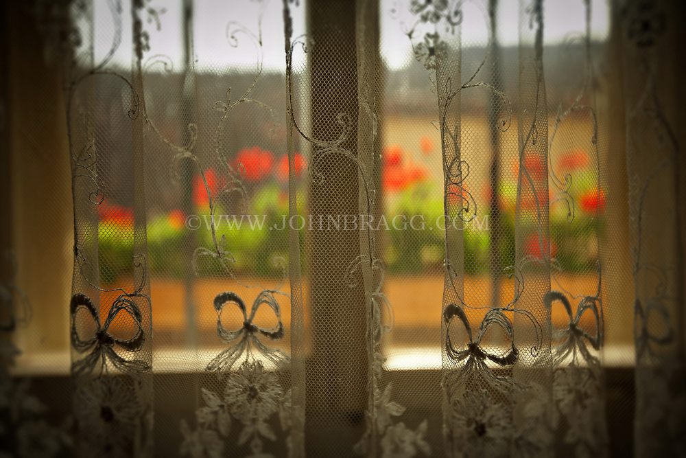 A decorative lace curtain, a window with red tulips, Rothenburg, Germany