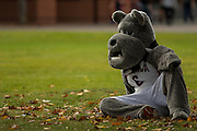 Spike in a contemplative mood during Fall Family Weekend. (Matt Weigand photo)