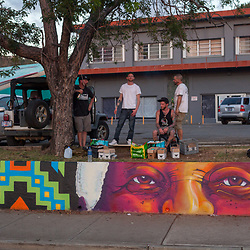 Anthill Collective Paints Mandela Circle