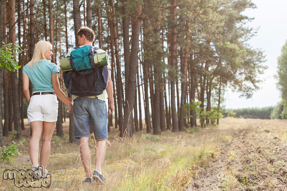 Rear view of young couple holding hands while hiking in forest