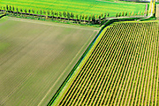 Nederland, Zeeland, Gemeente Borsele, 19-10-2014;  Zak van Zuid-Beveland, omgeving Ovezande. Kleinschalig landschap van binnendijken en kleine polders, 'oudland'. Boomgaarden en windsingels.<br /> Old Polders and ancient hedges in Zealand, Southwest Netherlands.<br /> luchtfoto (toeslag op standard tarieven);<br /> aerial photo (additional fee required);<br /> copyright foto/photo Siebe Swart
