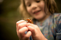A young girl catching salamanders