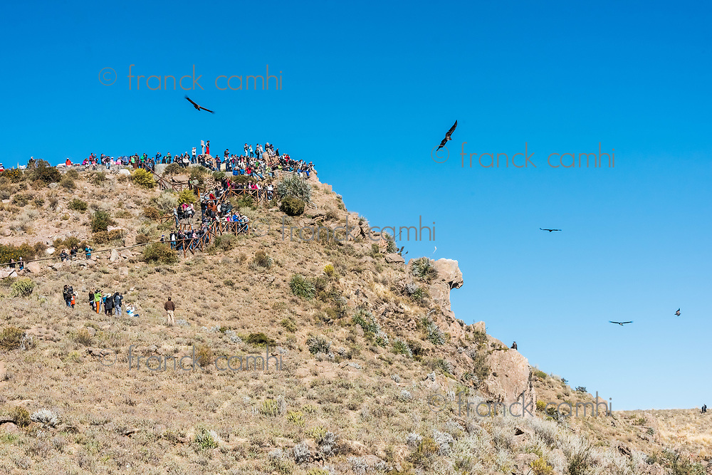 Arequipa, Peru - July 30, 2013: tourists watching condors in the Colca Canyon at Arequipa Peru on july 30th, 2013