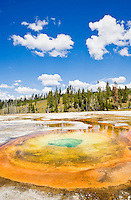 The Chromatic Pool in the Upper Geyser Basin, Yellowstone National Park, Wyoming, USA.