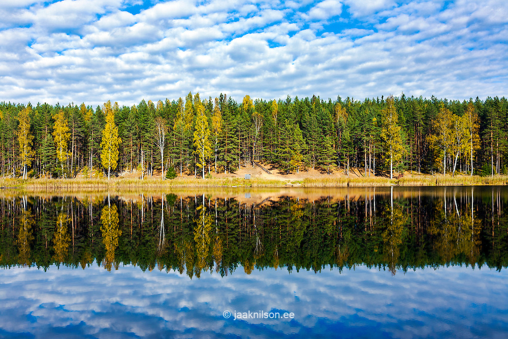 Õdri lake in Valga county, Estonia. Forest, colorful trees reflecting on calm water.