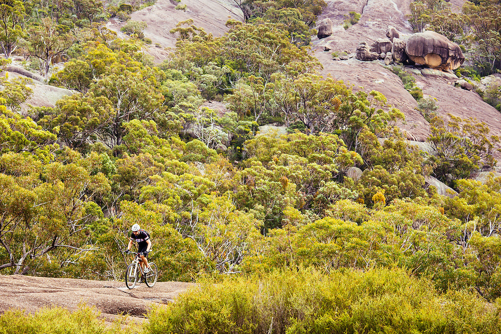A mountian bike rider pedals up along a granite slab surrounded by forested gullies and rock. Peak Trail, Girraween National Park.