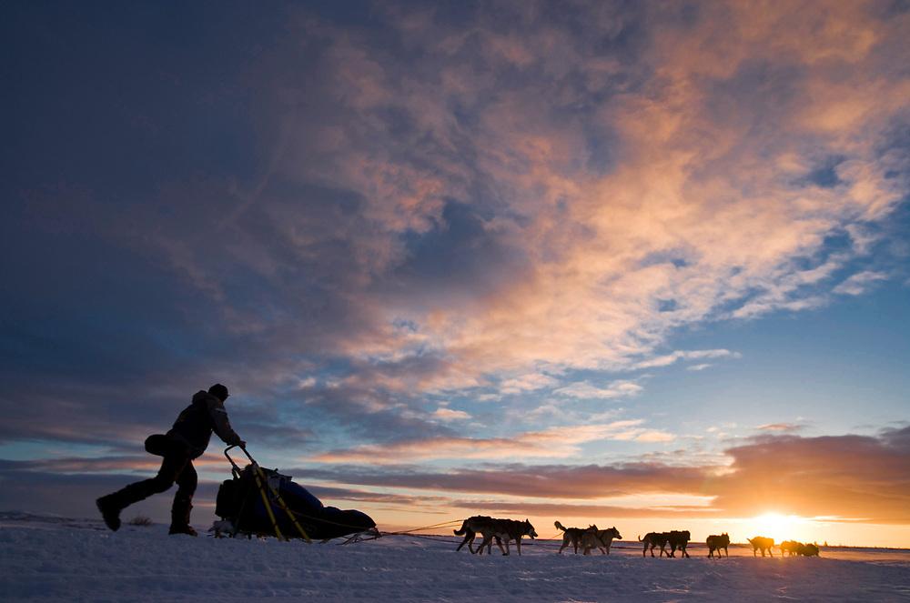 USA, Alaska, Unalakleet, 2005 champion Robert Sorlei races dog team toward Bering Sea coast during 2005 Iditarod sled dog race at sunset on winter day