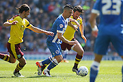 Brighton central midfielder, Beram Kayal (7) beats off Burnley midfielder Joey Barton (13) during the Sky Bet Championship match between Brighton and Hove Albion and Burnley at the American Express Community Stadium, Brighton and Hove, England on 2 April 2016. Photo by Phil Duncan.