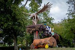 Daniels Cathal, IRL, Harieko DHI<br /> Mondial du Lion - Le Lion d'Angers 2019<br /> © Hippo Foto - Dirk Caremans<br />  19/10/2019