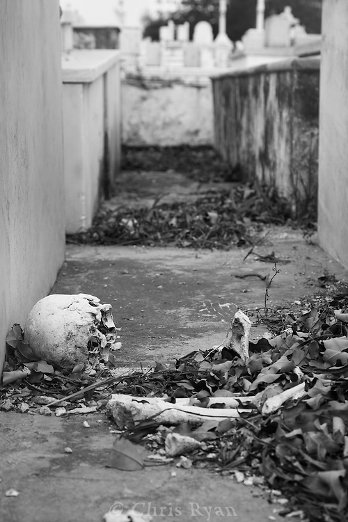 Human bones scattered between graves, Christopher Columbus Cemetery (Necropolis Cristobal Colon), Havana, Cuba