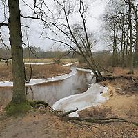 2012 - Lutterzand