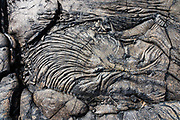 Pahoehoe lava patterns below the cliffs of Holei Pali, by Chain of Craters Road, Hawaii Volcanoes National Park, on the Big Island, Hawaii, USA. Established in 1916 and later expanded, the park (HVNP) encompasses two active volcanoes: Kilauea, one of the world's most active volcanoes, and Mauna Loa, the world's most massive shield volcano. The park portrays the birth of the Hawaiian Islands with dramatic volcanic landscapes, native flora and fauna, and glowing flowing lava. Most recently erupted in 1984, Mauna Loa may have emerged above sea level about 400,000 years ago and has likely been erupting for at least 700,000 years. Measured from its base on the ocean floor, it rises over 33,000 ft, significantly greater than the elevation of Mount Everest above sea level. HVNP is honored as a UNESCO World Heritage Site and International Biosphere Reserve.