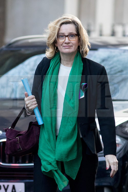 © Licensed to London News Pictures. 06/02/2018. London, UK. Home Secretary Amber Rudd arriving in Downing Street to attend a Cabinet meeting this morning. Rudd is wearing symbolic green and purple colours, as today is the 100th anniversary of women's right to vote. Photo credit : Tom Nicholson/LNP