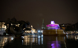 © London News Pictures. The fountains at Trafalgar Square, central London, are illuminated pink tonight to celebrate the birth of the new royal baby, Princess of Cambridge. Isabel Infantes/LNP