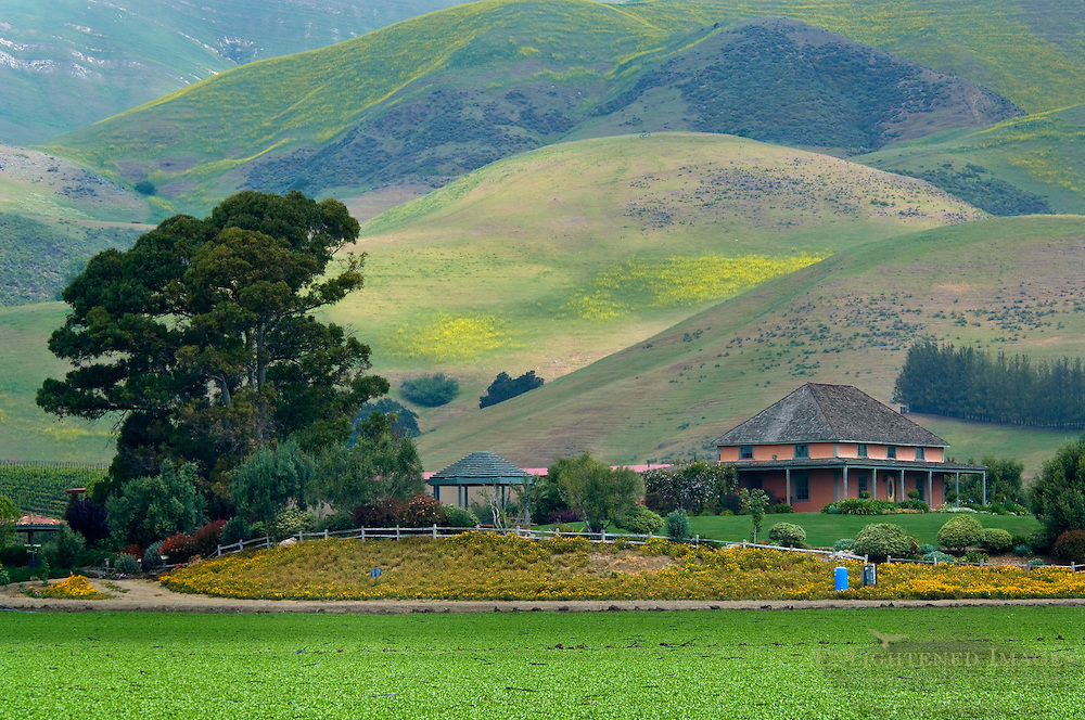 El Rincon Adobe and green hills in Spring at Talley Vineyards, Edna Valley, San Luis Obispo County, California