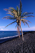 Keawaiki Black Sand Beach, Island of Hawaii, Hawaii, USA<br />