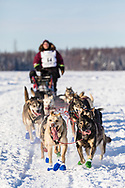 Musher Aaron Burmeister after the restart in Willow of the 46th Iditarod Trail Sled Dog Race in Southcentral Alaska.  Afternoon. Winter.
