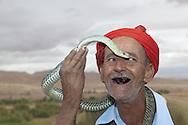 Serpent tamer, Ouarzazate, Morocco
